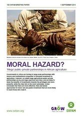 Moral Hazard – 'Mega' Public–Private Partnerships in African Agriculture